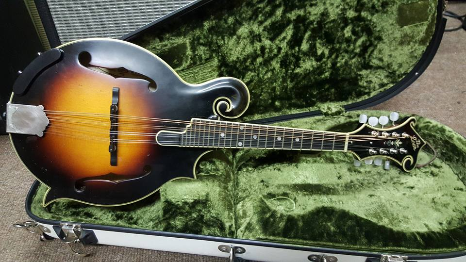 The Loar LM-500